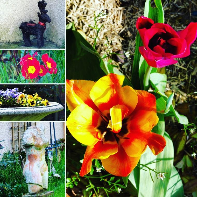 anniversaire_fleurs 1
